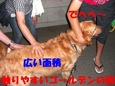 CIMG6879.jpg