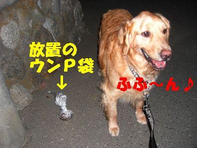 CIMG6948.jpg