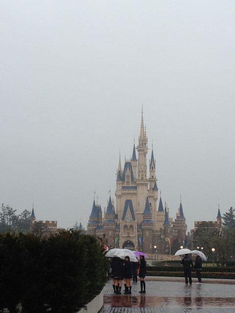 今日も雨。