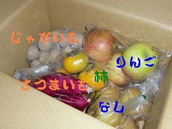 CIMG0429_20111006203833.jpg