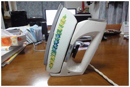 DSC00860.jpg