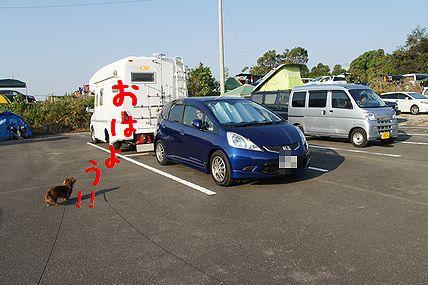 DSC05020.jpg