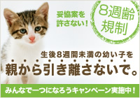 8syu_b_side_L3.jpg