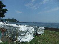 20110817海