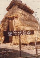 20121025竪穴式住居