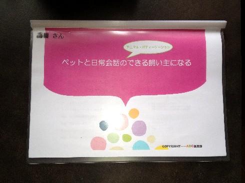 text1.jpg