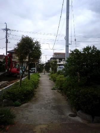 yuho03.jpg