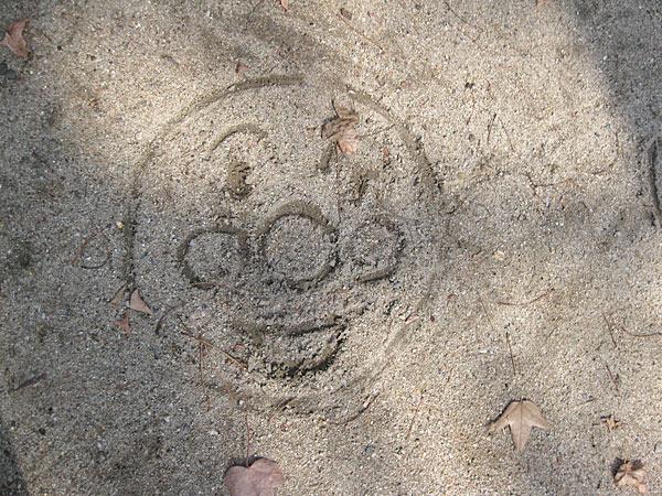 0224c.jpg