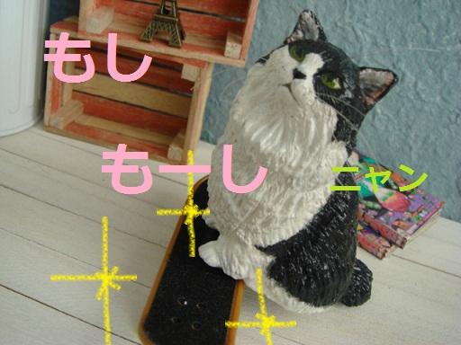 DSC05375_20121027142647.jpg