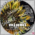 minmi Live tour 向日葵 サンプル