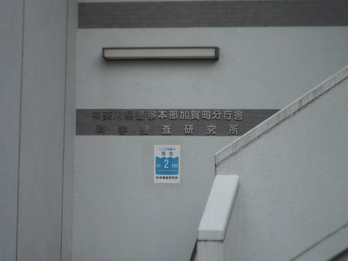 DSCF9384.jpg