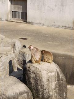 zoo2014-10.jpg