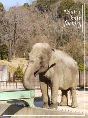zoo2014-12.jpg