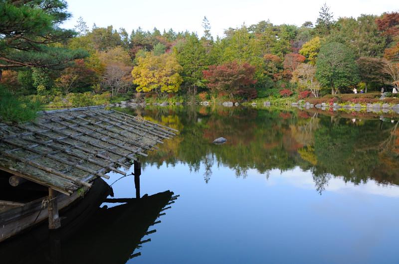 庭園の池1_