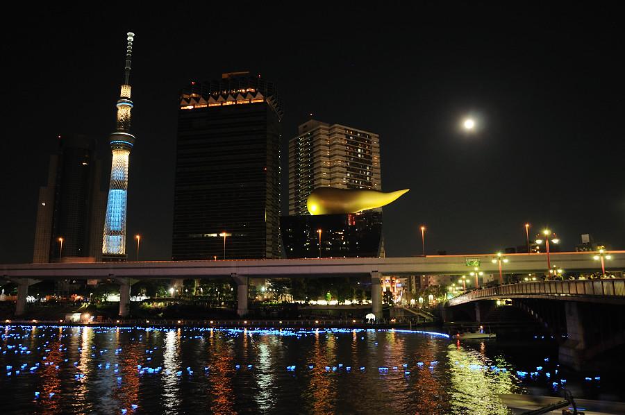 東京ホタル111_