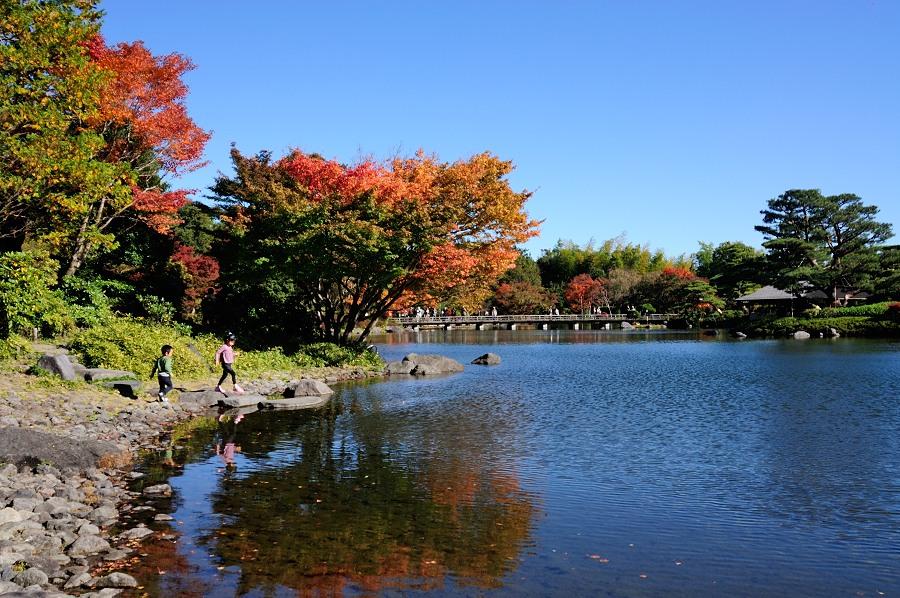 日本庭園__05