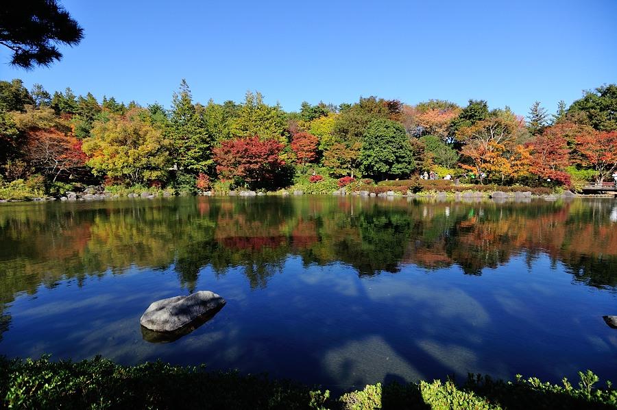 日本庭園__08