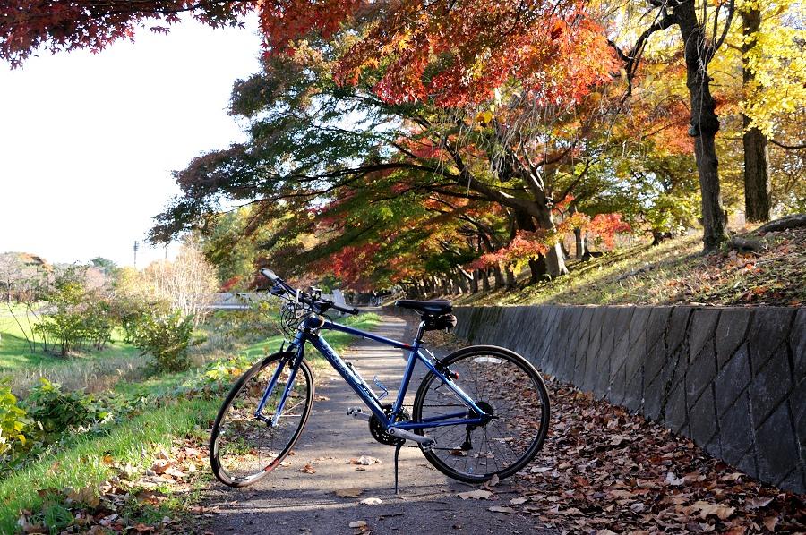武蔵野公園__06