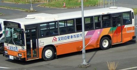 DSCN0781.jpg