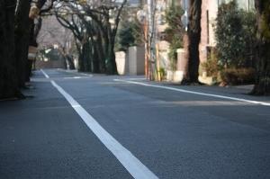 2009/02/14 上北沢 桜並木