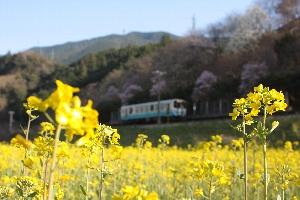 2010/03/17 喜多山b