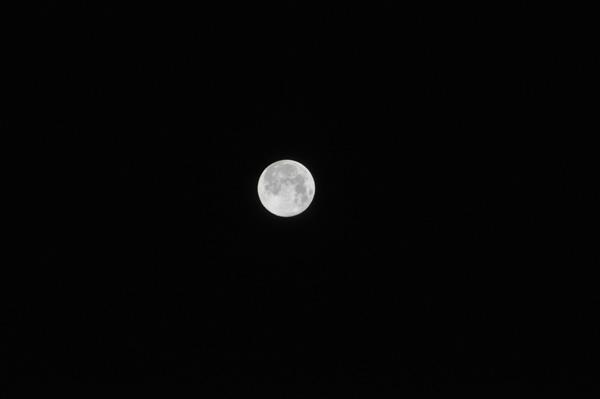moon01.jpg