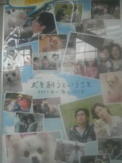 犬を飼うポスター