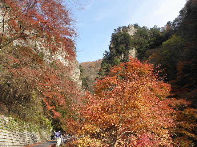 神戸岩の紅葉1