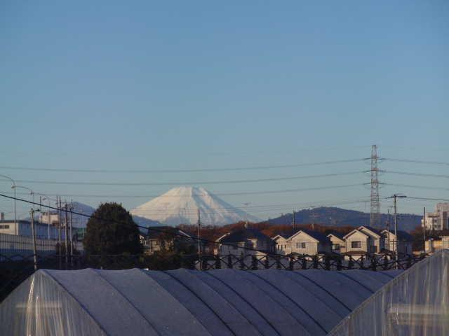 石川Pからの富士