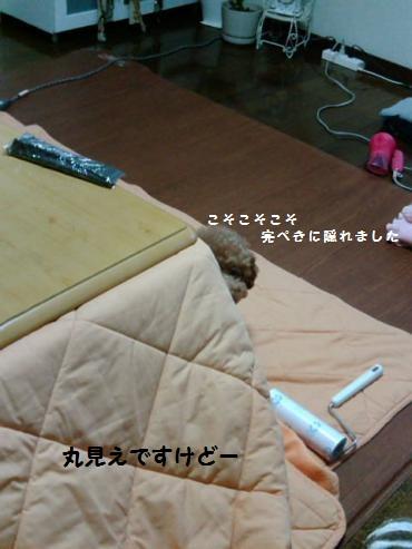 F1002583_convert_20120209160349.jpg