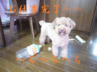 P1020108_convert_20110914102310.jpg