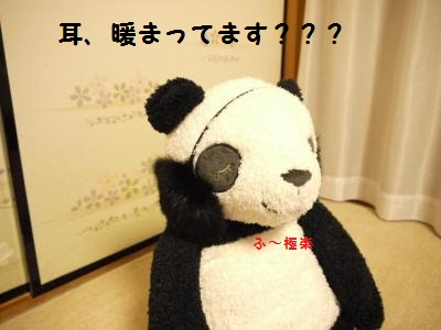 P1040756_convert_20120111223303.jpg