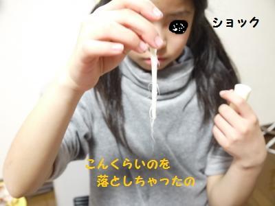 P1040816_convert_20120113174718.jpg