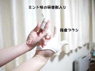 P1040904_convert_20120116184935.jpg