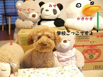 P1040976_convert_20120127130306.jpg