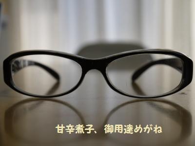 P1060225_convert_20120315131029.jpg