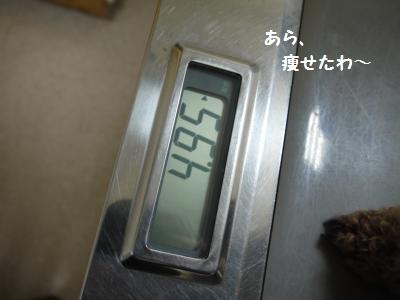 P1060253_convert_20120315205513.jpg