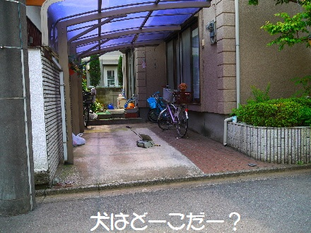 P1070980(1).jpg