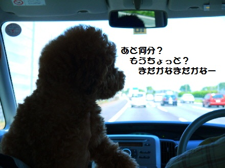 P1080209(1).jpg
