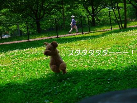 P1080675(1).jpg