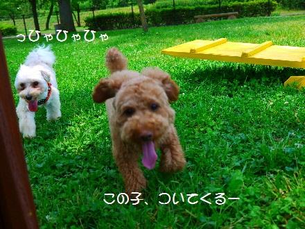 P1080699(1).jpg