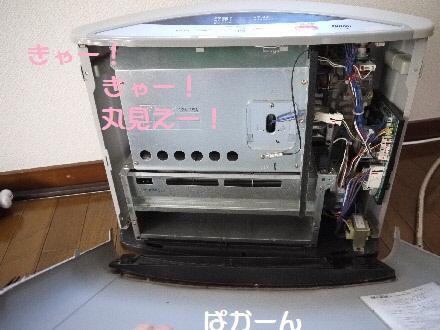 P1090814(1).jpg