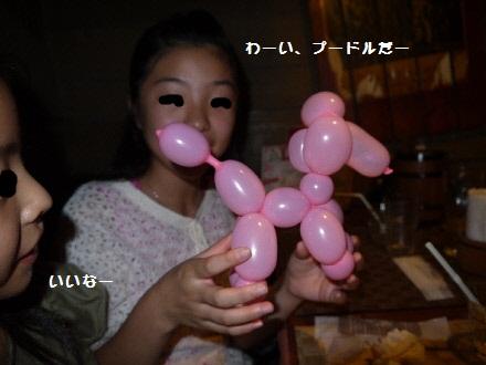 P1100155(1).jpg