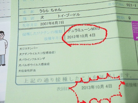 P1120442(1).jpg
