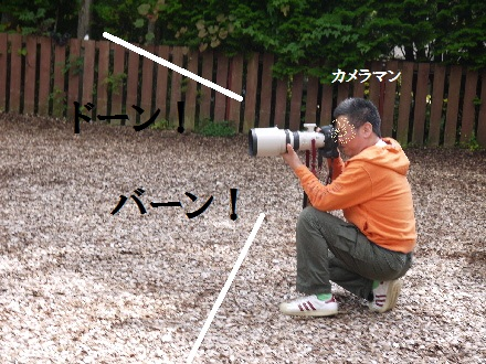 P1120498(1).jpg