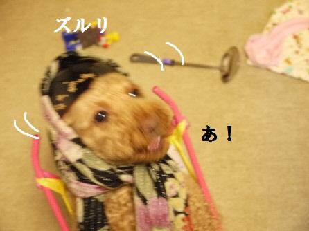 P1160126(1).jpg