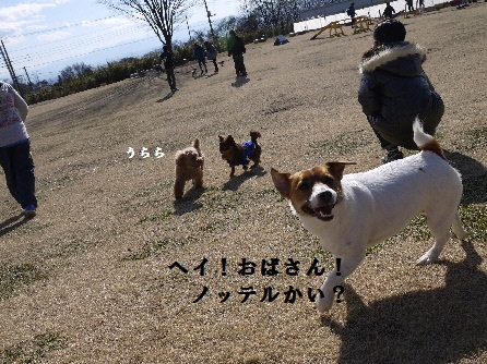 P1160349(1).jpg