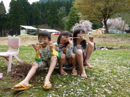 魚_convert_20120620111232