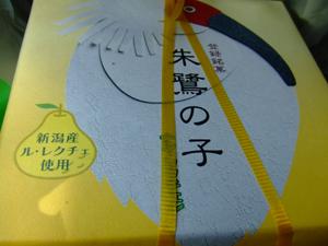 後藤楽器2011.6.5 124-1