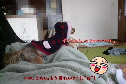 怒った(;^ω^)